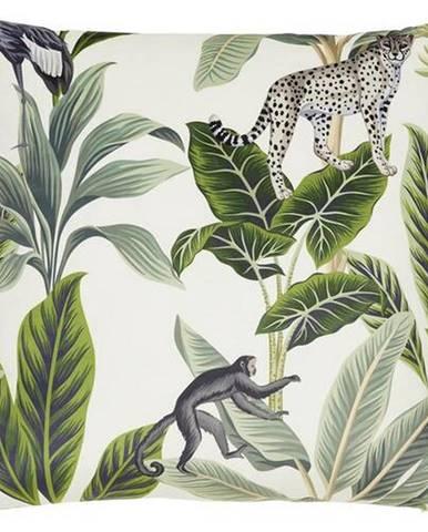 Dekoračný Vankúš Junglelife, 60/60 Cm, Biela