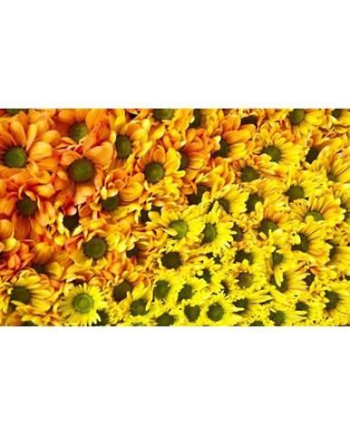 Dekor sklenený Žlté kvety 30/60