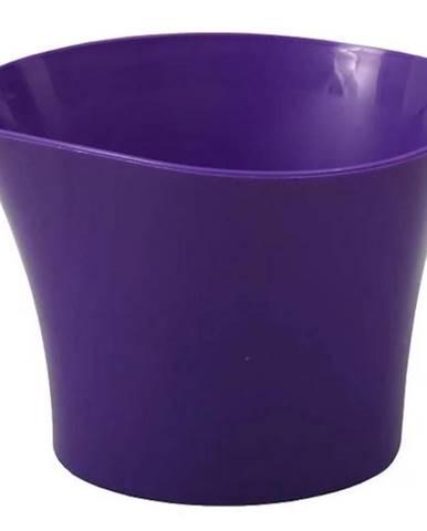 Obal Primule 12 cm/fialový