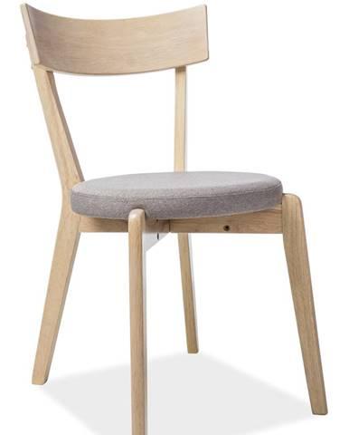 Nelson jedálenská stolička sivá
