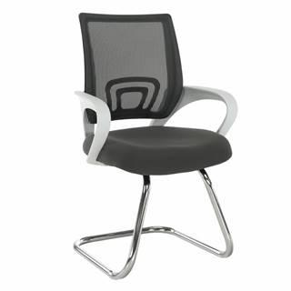 Sanaz Typ 3 konferenčná stolička sivá