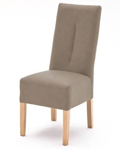 Jedálenská stolička FABIUS sivá/dub