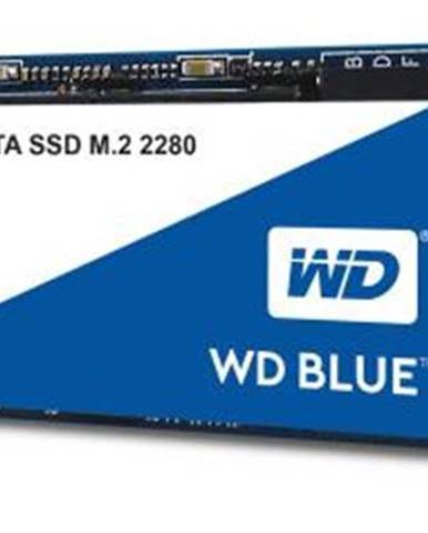 SSD Western Digital Blue 3D Nand 1TB M.2