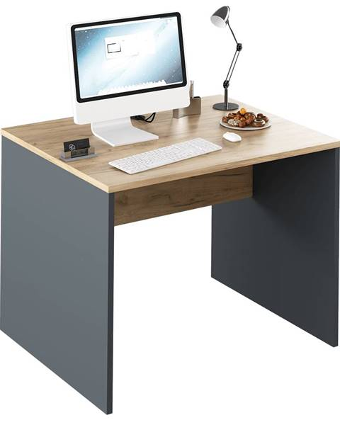 Tempo Kondela Písací stôl grafit/dub artisan RIOMA NEW TYP 12