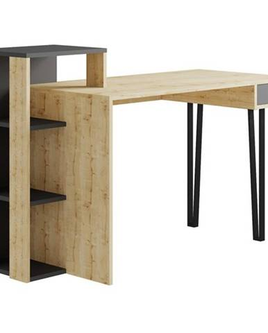 Písací stôl s regálom PICADILLY LOYD dub/antracit