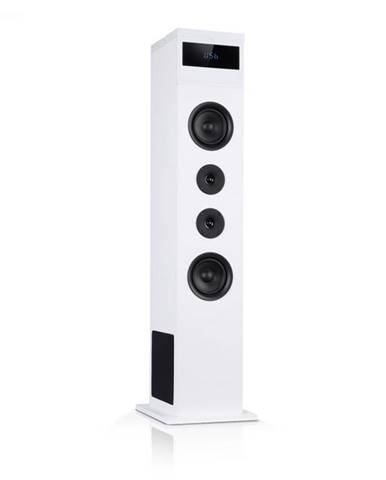 Auna Karaboom 100, vežový reproduktor, 120 W max., bluetooth, 2 v 1 USB, biely