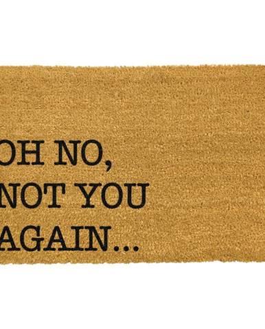 Rohožka z prírodného kokosového vlákna Artsy Doormats Oh No Not You Again, 40 x 60 cm