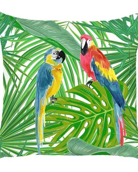 Apolena Obliečka na vankúš Mike&Co.NEWYORK Jungle Parrot, 43 × 43 cm