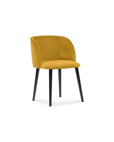 Žltá jedálenská stolička so zamatovým poťahom Windsor & Co Sofas Aurora